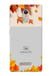 Gionee S6s autumn maple leaves backdrop Design