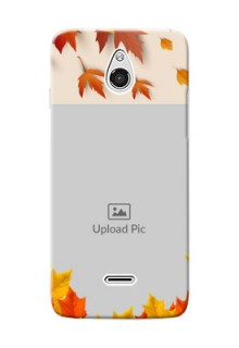 InFocus M2 autumn maple leaves backdrop Design