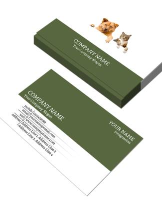 Lawyer Horizontal Double Side Business Card