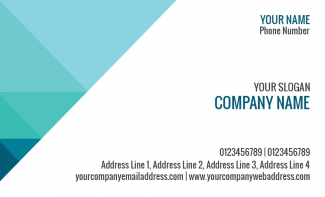 Professional  Horizontal Business Card