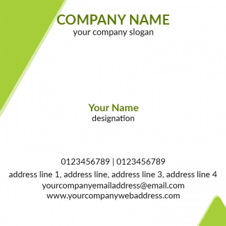Profeesional  Square Business Card