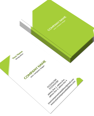 Profeesional  Vertical Business Card