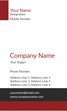 Red And Grey Vertical Business Card